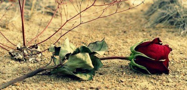 Consejos que Pueden Ayudarte para Superar un Desamor