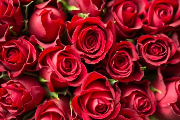 Regálate el Día de San Valentín para ti