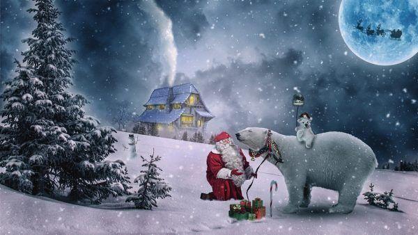 5 Frases de Feliz Navidad para Tus Amigos