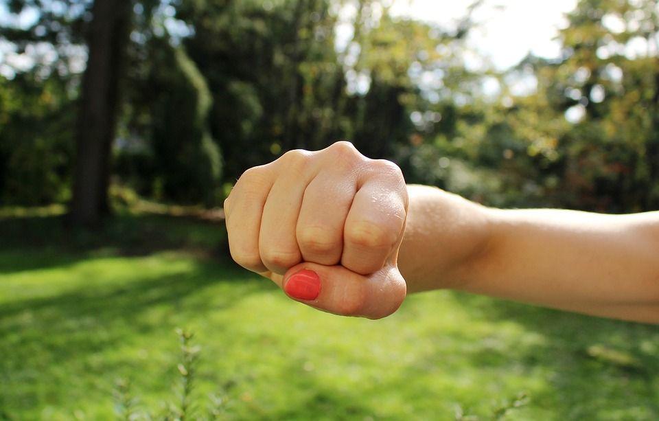 Orígenes de la conducta agresiva