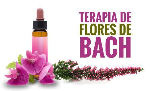 flores de Bach contra la depresión